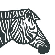 Animals Zebra Print