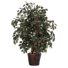 Deluxe 4' Artificial Potted Natural Sakaki Tree in Dark Green