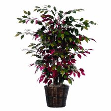 "Bushes 48"" Artificial Potted Natural Capensia Tree in Green and Red"