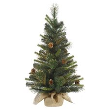 Glitter Tip Pine Table top Tree
