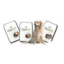 Chicken and Brown Rice Dry Dog Food