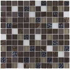 "Elida Glass 12"" x 12"" Mosaic in Coral Dark Glass"