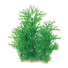 Natural Elements Antler Fern Combo Aquarium Ornament in Green
