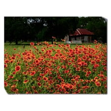 Old Homestead Outdoor Canvas Art
