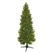 Pre-Lit 7' Clear Spruce Christmas Tree