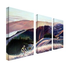 Sunset Cyclist by Colleen Proppe Canvas Art (Set of 3)