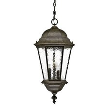 Telfair 3 Light Outdoor Hanging Lantern