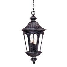 Wyndham 4 Light Outdoor Hanging Lantern