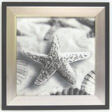 Kitchen Starfish Canvas Wall Art
