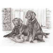 Sketching Pencil By Numbers Labradors Sketching Pencil