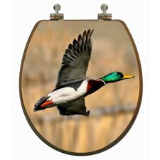 3D Upland Series Mallard Duck Flying Round Toilet Seat