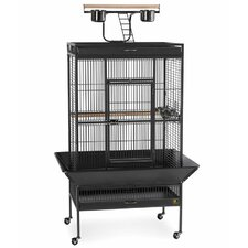 Signature Series Select Wrought Iron Cage - 30x22x63