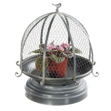 Large Chicken Wire Cloche Planter Stand