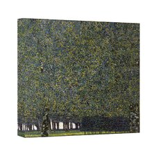 Gustav Klimt ''The Park'' Canvas Art