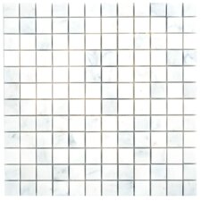 "Carrara Extra Marble Mosaic Polished 12"" x 12"" Tile in White"