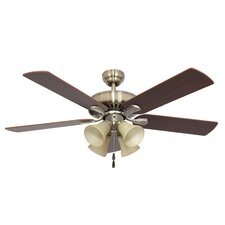 Bartlett Four Light Ceiling Fan Light Kit