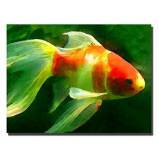 "Goldfish by Amy Vangsgard, Canvas Art - 24"" x 32"""