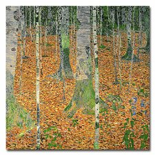 """The Birch Wood"" Canvas Art"