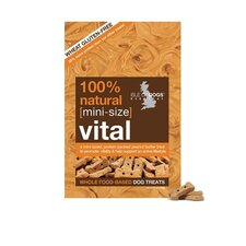 Mini-Size Vital Biscuit Dog Treat