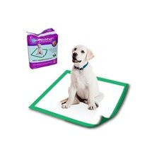 Disposable Potty Pad (Set of 10)