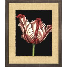 Floral Living Vibrant Tulips II Framed Wall Art