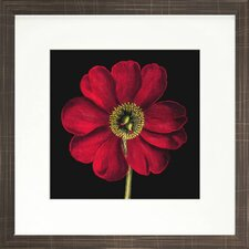 Floral Living Dramatic Bloom I Framed Wall Art