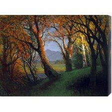 'Sunset In The Nebraska Territory' by Albert Bierstadt Stretched Canvas Art