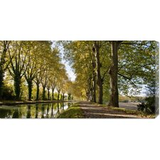 'Trees growing by river in park' by Howard Kingsnorth Stretched Canvas Art