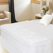 "13"" Euro Box Top iCoil Spring Mattress"