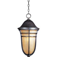 Westport VX 1 Light Outdoor Hanging Lantern