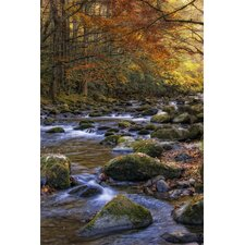 Autumn on Little River Wall Art