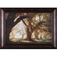 Oak Alley Morning Light Wall Art