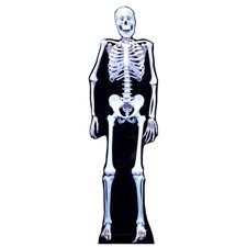 Skeleton Life-Size Cardboard Stand-Up
