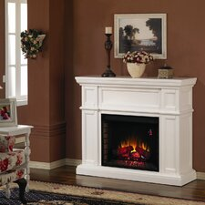 Artesian Electric Insert Fireplace