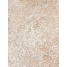 "Padova 13"" x 10"" Wall Tile in Brown"