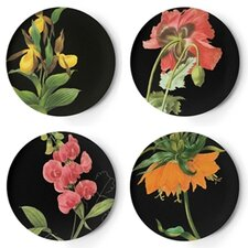 Florilegium Dinner Plate (Set of 4)