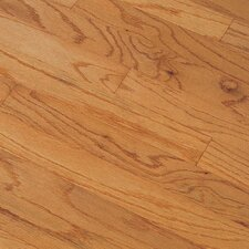 "Northshore Plank 7"" Engineered Red Oak Flooring in Butterscotch"