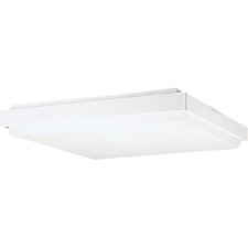 Energy Star White Linear Fluorescent Flush Mount