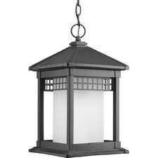 Merit 1 Light Outdoor Hanging Lantern