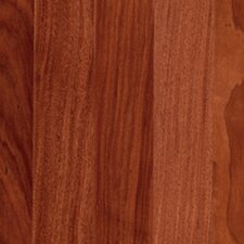 "Rarity Elysia 3-1/4"" Engineered Santos Mahogany Flooring in Natural"