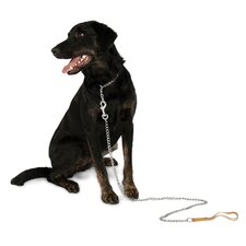 Aspen Pets Medium Weight Mighty Link Chain Collar