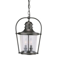 Guild Hall 2 Light Hanging Lantern