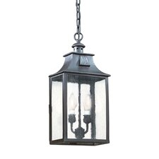 Newton 2 Light Hanging Lantern