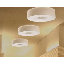 Skin Ceiling Light