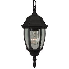 Cast Aluminum 1 Light Outdoor Pendant