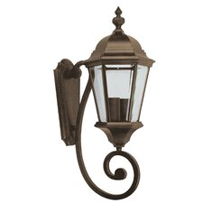 Brielle 2 Light Outdoor Wall Lantern