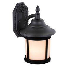 Jake 1 Light Outdoor Wall Lantern