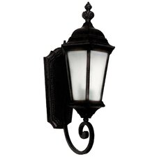 Brielle 1 Light Outdoor Wall Lantern