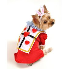 White Rabbit Dog Costume