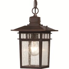 Cove Neck 1 Light Outdoor Hanging Lantern